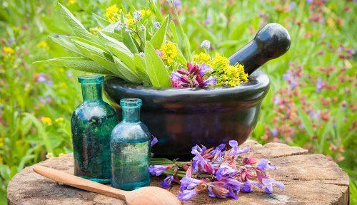 Proganic herbs for liver